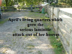 April's living quarters which 